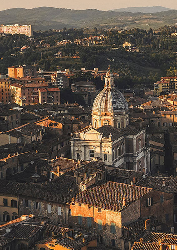 Categoria Siena